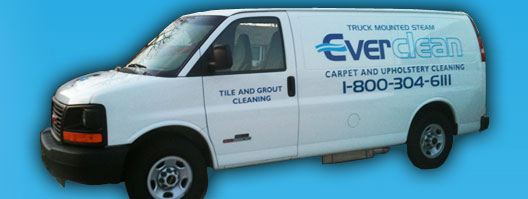 Everclean Carpet Cleaning